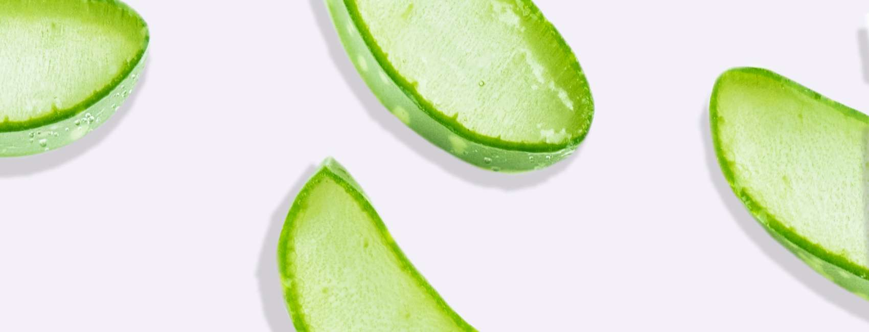 Cross section of aloe vera plant on grey background