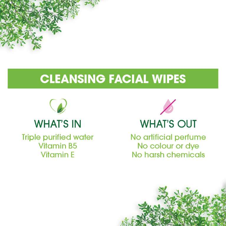 Cleansing Facial Wipes In&Out Ecommerce
